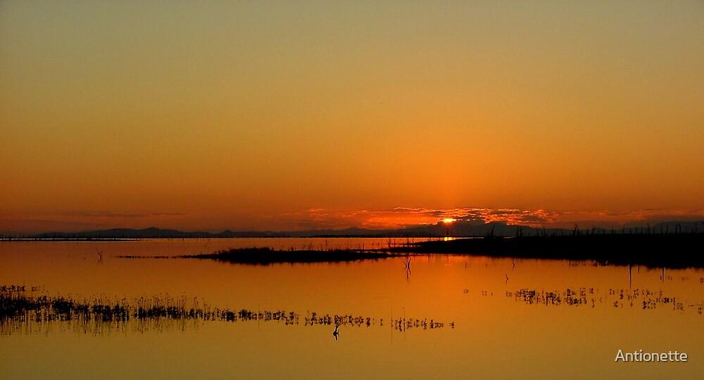 Sundowner time on Lake Kariba by Antionette