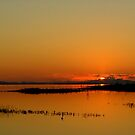 Sundowner time on Lake Kariba by Antionette