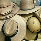 Mexican Hat Check by phil decocco