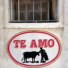 Te Amo Robusto by phil decocco