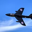 Hawker Hunter T.7A WV318 by Andrew Harker