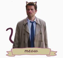 Castiel The Cat (Meow) by FinalFee