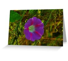 One Single Flower Greeting Card
