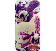 flower colour iPhone Case/Skin