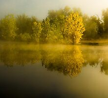 Still Morning Mist by Photopa