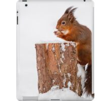 Red squirrel gathering food for Winter iPad Case/Skin