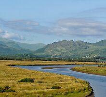 Gwynedd Estuary by Deb Maidment