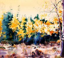 Aspen Meadow by Elaine Frenett