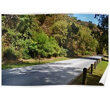 Roadway thru Park Poster