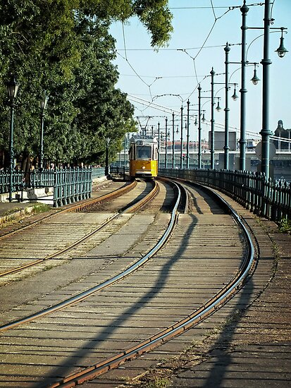 Yellow Line #2 by Lucinda Walter