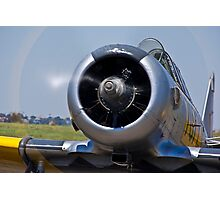 North American AT-6 Harvard — 7072 Photographic Print