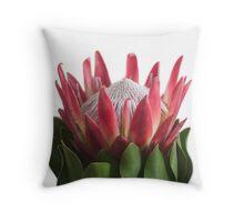 Single Protea Throw Pillow