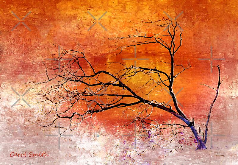 Barren Tree by CarolM