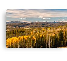 Aspens of Scale 2 Canvas Print