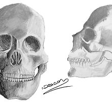 Skulls by natashadeacon