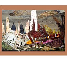 ECO Disturbance  Photographic Print