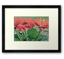 Mema's Flowers  Framed Print