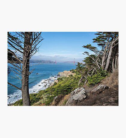 Land's End, San Francisco Photographic Print
