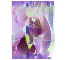 6127iv Orchid Goddess Poster