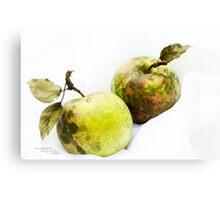 Still green Canvas Print