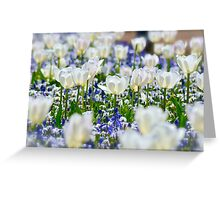 Favourite Floriade Garden Greeting Card