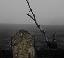 Misted Memories by Country  Pursuits