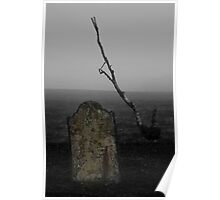 Misted Memories Poster