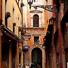 Bologna Alley by Rae Tucker