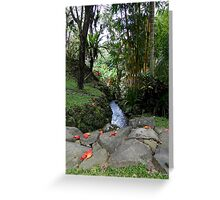 Walk The Beauty Way Greeting Card