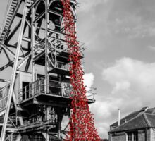Poppies at woodhorn colliery Sticker