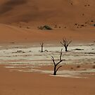 Dry desert deserted by Taschja Hattingh