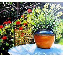 De mon jardin Photographic Print