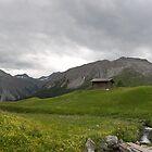 Arosa Mountains, Switzerland by palmerphoto