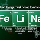 FeLiNa Poster (Breaking Bad) by Aguvagu