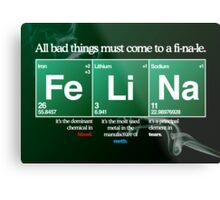 FeLiNa Poster (Breaking Bad) Metal Print