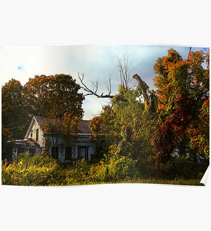 The House that the Trees Ate Poster