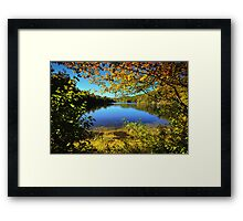 A Scene Through the Brush Framed Print