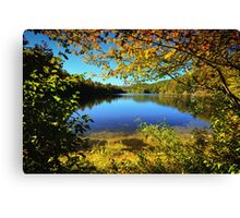 A Scene Through the Brush Canvas Print