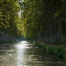 Canal du Midi 1 by Jacinthe Brault
