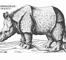 Albrecht Durer - Rhinoceros  by William Martin