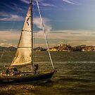 Destination Alcatras by Gerard Rotse