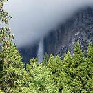 Shrouded in Cloud - Upper Yosemite Falls  by Barbara Burkhardt