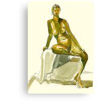 Stretcher Canvas Print