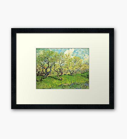 Orchard in Blossom. Vintage floral garden oil painting by Vincent van Gogh. Framed Print