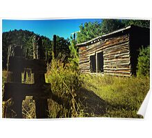 Storage Shed Poster