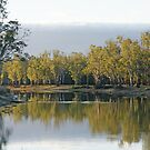 Barmah III by Harry Oldmeadow
