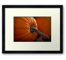 A Pumpkin For Thoreauing Framed Print