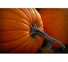 A Pumpkin For Thoreauing Photographic Print