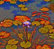 Waterlilies & koi at the local pond by Nira Dabush