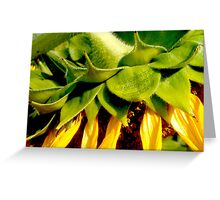 Nodding Yellow Head Greeting Card